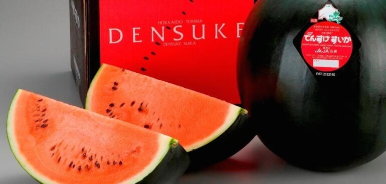 Densuke Watermelon